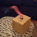 miniature pour Un tentacule qui bouge un couteau dans tous les sens