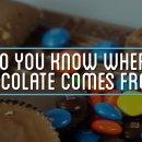 miniature pour D'où vient le chocolat ?