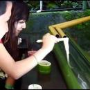 nouilles-bambous