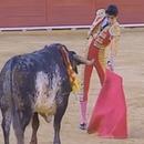 miniature pour Le Torero Victor Barrio tué par le taureau