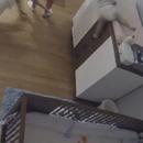 miniature pour Un enfant de 9 ans rattrape de justesse un bébé qui tombe