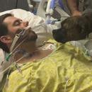 miniature pour Un chien sur le lit d'hôpital de son maître mourant
