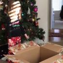 miniature pour Une fille de 3 ans reçoit un carton vide pour Noël