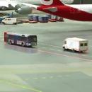 miniature pour Un serpent sur la route d'un aéroport