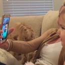 miniature pour Deux bébés se parlent avec Facetime