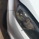 miniature pour Un oiseau coincé dans les phares de sa voiture