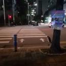 miniature pour Un chat qui attend le feu vert pour traverser