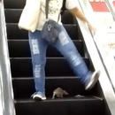 miniature pour Un rat saute sur les personnes qui descendent l'escalator