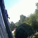 miniature pour Un enfant tombe d'une fenêtre et un ouvrier amorti sa chute