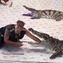 crocodile-croque-bras-dompteur