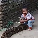 enfant-joue-python