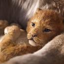 roi-lion-2019-bande-annonce