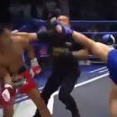 miniature pour Un combattant de Muay Thai élimine son adversaire et l'arbitre
