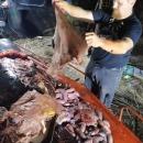 baleine-morte-40-kilos-plastique-estomac