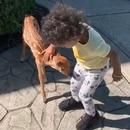 enfant-rencontre-faon