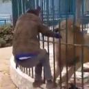 homme-mordre-lion-caresser