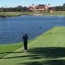Il tue un canard en jouant au golf