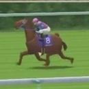 course-chevaux-japonais