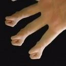 hand-fingers-cyriak