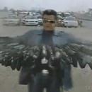 Terminator Indien