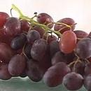 miniature pour De la grappe au raisin sec
