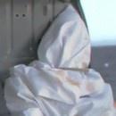 miniature pour Ben Laden jeté dans l'eau