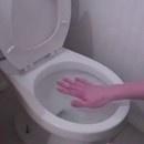 miniature pour Blague du film plastique sur les toilettes