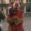 miniature pour Faire des calins à un ours dans la rue
