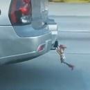 miniature pour Woody accroché à l'arrière d'une voiture