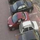 miniature pour Bagarre pour une place de parking