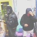 chihuahua-fuir-voleurs