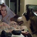 chien-peur-julia-roberts