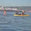 fille-surf-avale-baleine