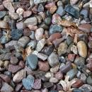 trouver-grenouille-pierres