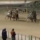 miniature pour Une course de chevaux excitante