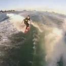 surfer-avec-dauphins