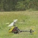 tuer-guepes-helicoptere-rc