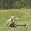miniature pour Tuer des Guêpes avec un Hélicoptère RC