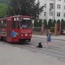 chien-bloque-tramway