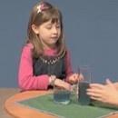 miniature pour Les enfants sont stupides