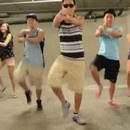 miniature pour Gangnam Style Mashup