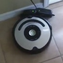 aspirateur-robot-etale-merde-chien