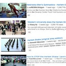 do-the-harlem-shake-youtube