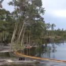 trou-d-eau-avale-arbres