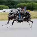 miniature pour Boston Dynamics - WildCat