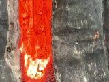 Un arbre qui brûle de l'intérieur