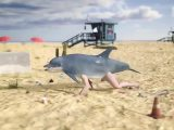 Un homme dauphin sur la plage